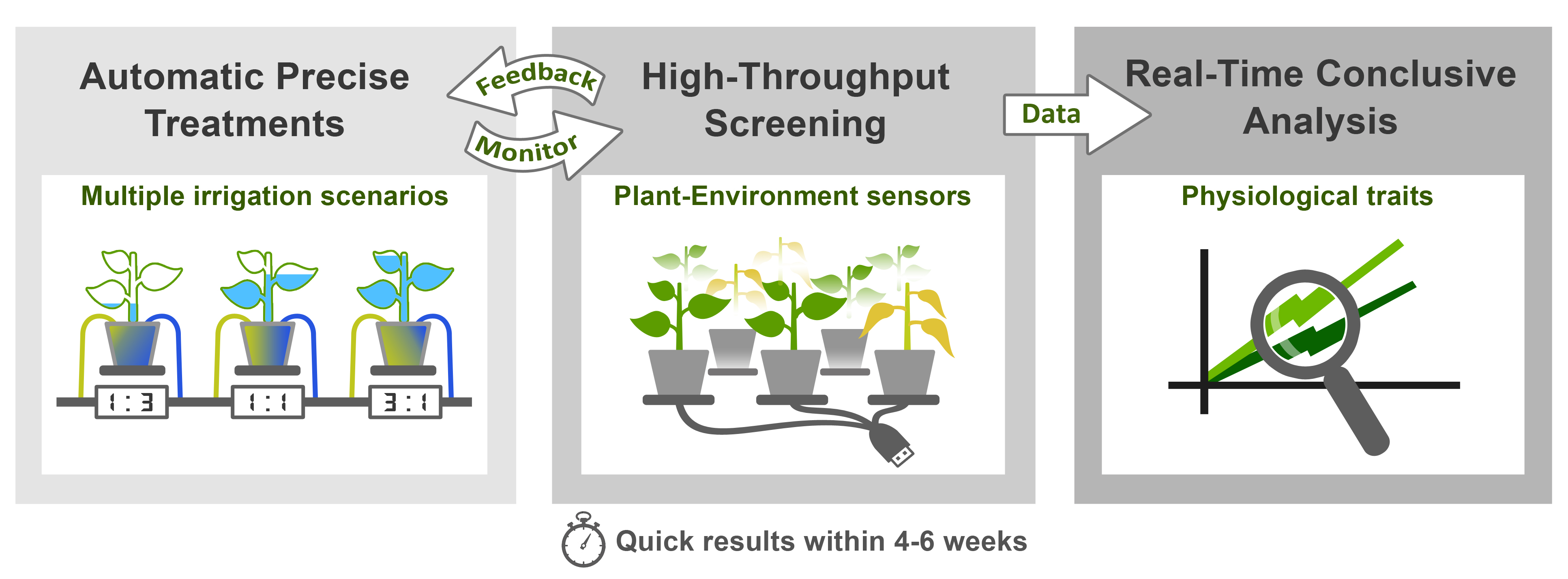 First in Functional Phenotyping