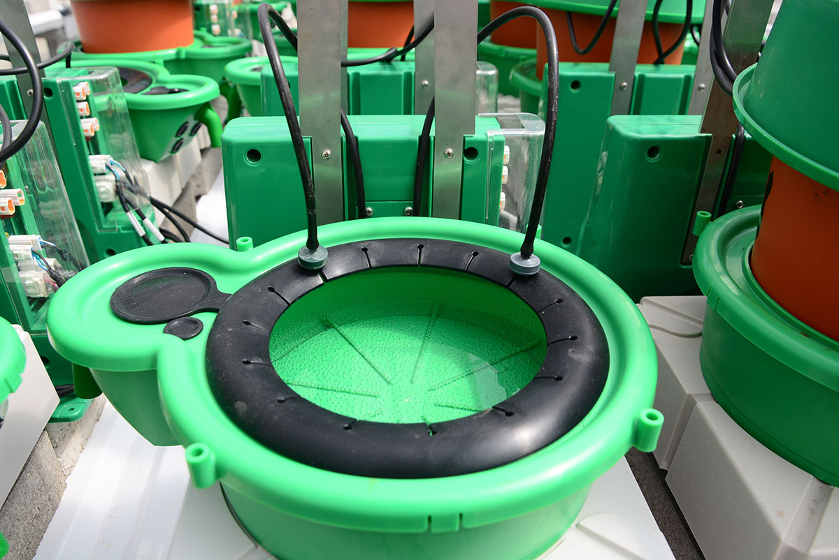 Specially designed drainage container